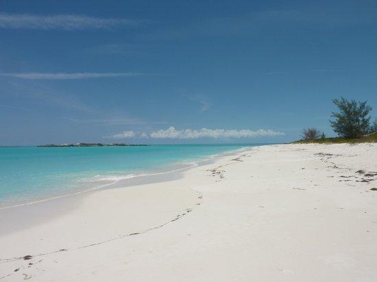 Sandals Emerald Bay Golf, Tennis and Spa Resort : Beach