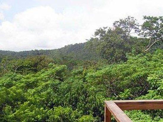 Crystal Paradise Resort: Valleyview