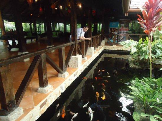 Rio Celeste Hideaway Hotel: hotel lobby