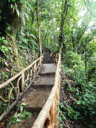 Rio Celeste : about 300 steps to waterfall