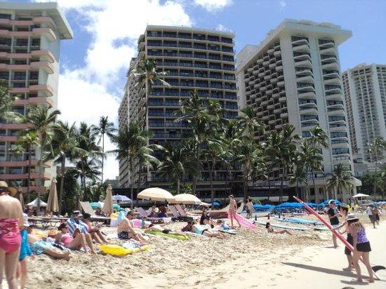 Waikiki Beach : Hotels that face onto the beach