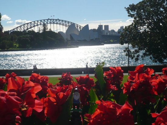 Royal Botanic Gardens : View from the lower gardens