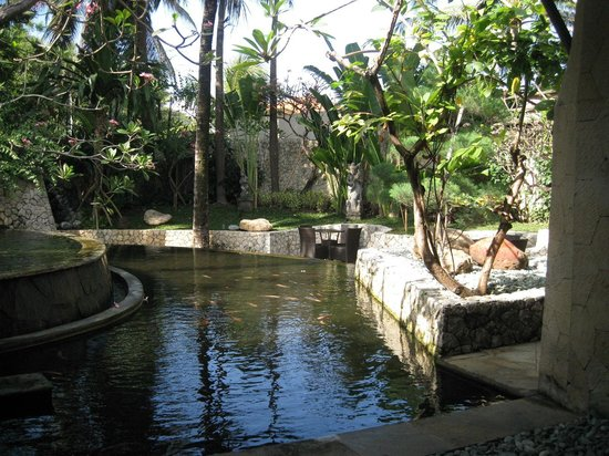 Padma Resort Legian : Garden Club Terrace
