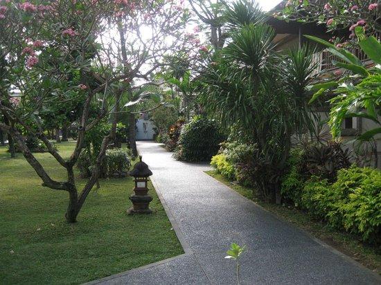 Padma Resort Legian: Our view