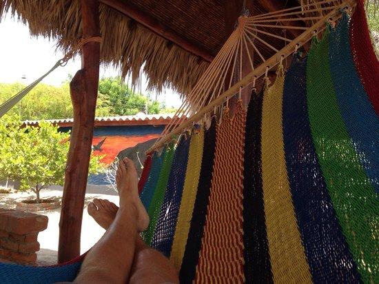 The Sunset Villas : Best hammocks