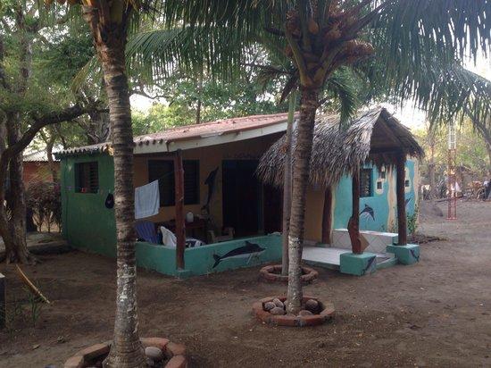The Sunset Villas: El Dolfin Shack! Primo!