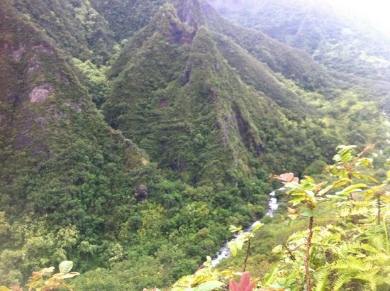 Iao Valley State Monument: A chunk of the hike off the path