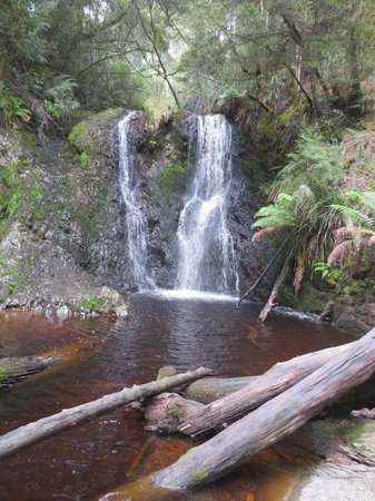 Castaway Holiday Apartments: Waterfall - bushwalk from The Peoples Park