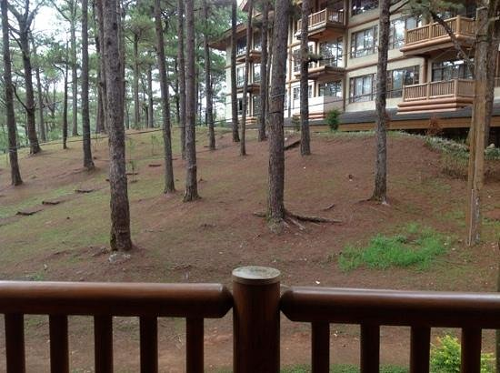 The Manor at Camp John Hay: view from our room