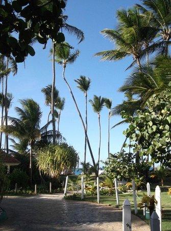 Melia Caribe Tropical: Beautiful place