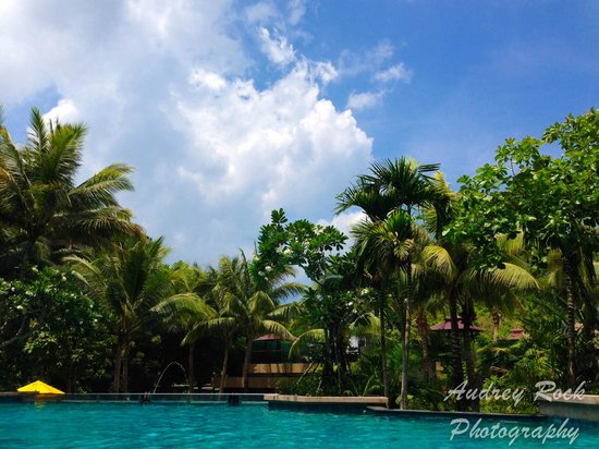 Novotel Phuket Kata Avista Resort and Spa: View from the pool