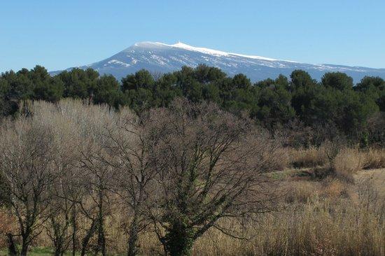 Camping Intercommunal le Brégoux : Mont Ventoux