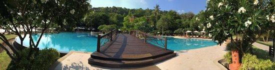 Phi Phi Island Village Beach Resort : Swimming pool