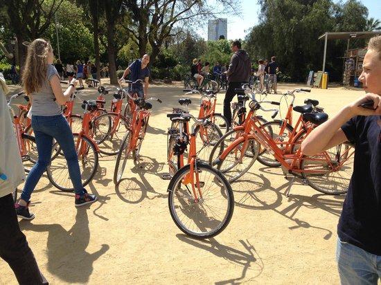 Budget Bikes Tours: Parc de la Ciutadella