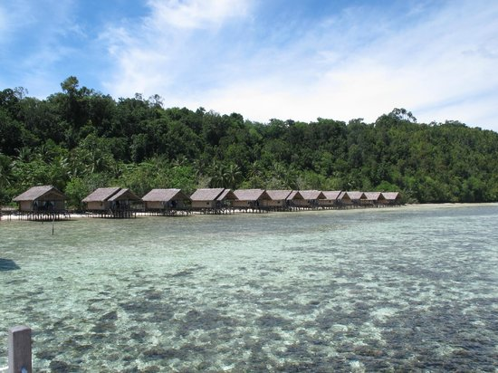 Papua Explorers Resort: View of the rooms.