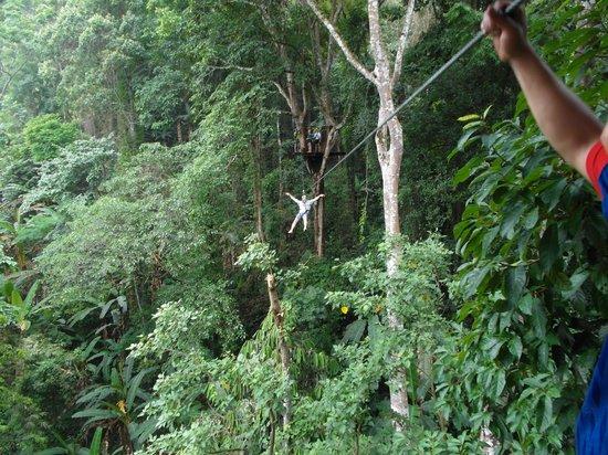 Flight of the Gibbon: zip lining