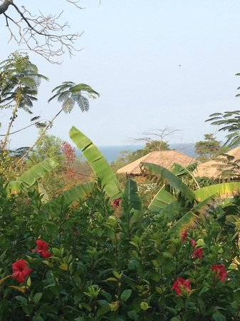 Kep Lodge: view from where I'd eat breakfast (communal area of lodge, not bungalow)