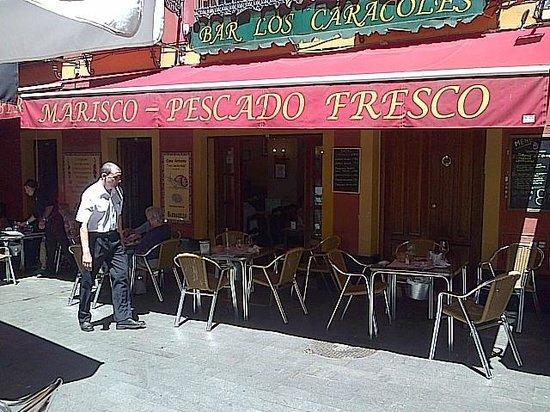 Casa Antonio Los Caracoles: La terrasse