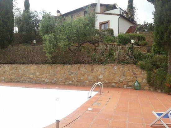 Agriturismo Il Sapito : piscina
