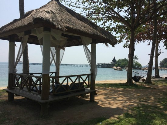Turi Beach Resort : Beautiful nature