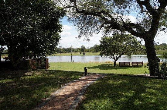 Arathusa Safari Lodge: Dem Elefanten gefällt es auch am Wasser