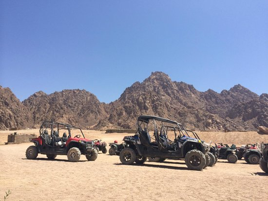 Sinai Safari Adventures : Синайская пустыня