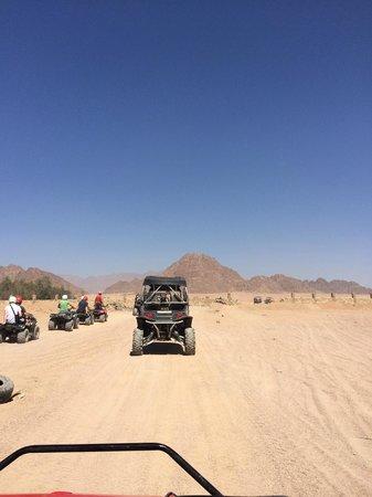 Sinai Safari Adventures : Багги и квадрики