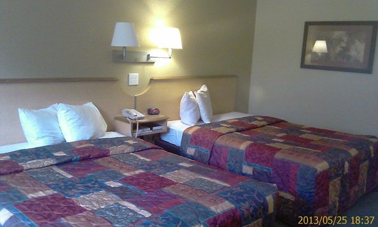 Red Roof Inn Pensacola Fairgrounds : Double room