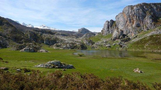 Lagos de Covadonga: ercina 2