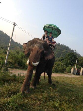 Hutsadin Elephant Foundation: Trekking through the grounds