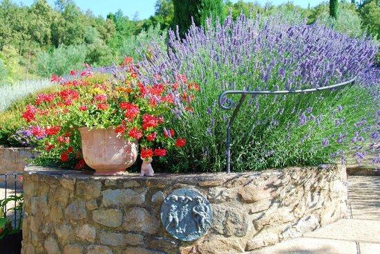 Casa Portagioia: Color. Everywhere something wonderful to enjoy, Tuscany