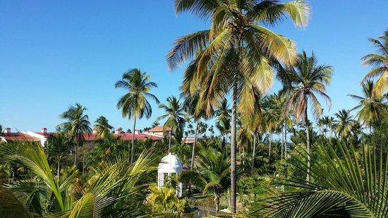 Paradisus Palma Real Golf & Spa Resort: view from room