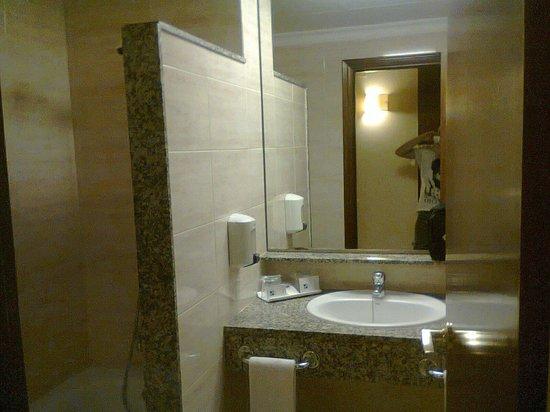 Hotel SB Corona Tortosa: Lavabo