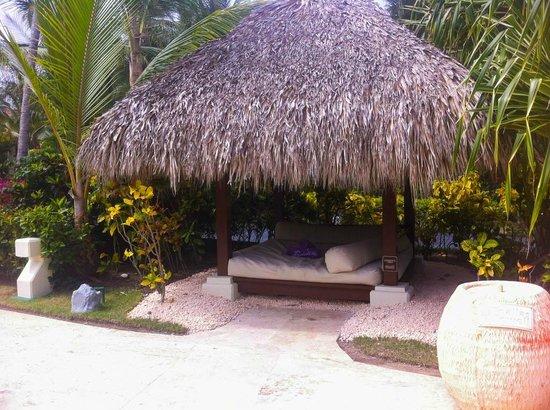 Paradisus Palma Real Golf & Spa Resort : nuestra cama con palapa cerca de la piscina royal service