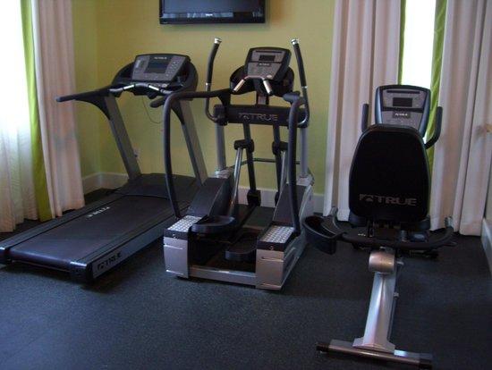 Hotel Indigo St Petersburg Downtown North: gym