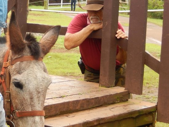 Molokai Mule Ride : Buzzy Sproat, owner Kalaupapa Mule Tour and ultimate mule whisperer
