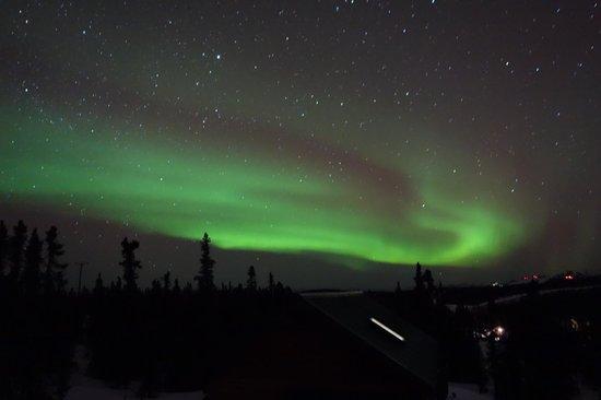 Aurora Borealis Lodge: View from cabin