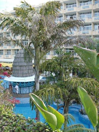 IFA Catarina Hotel: Территория отеля