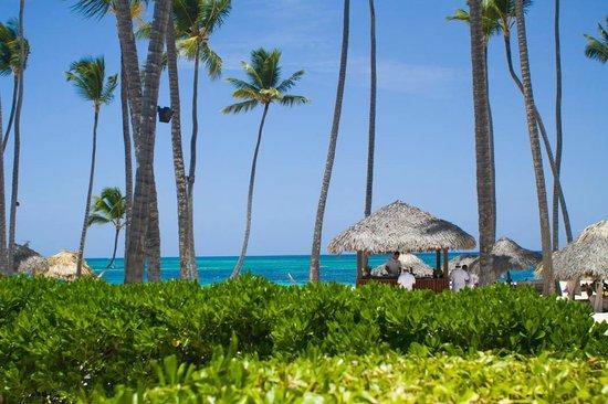 Paradisus Palma Real Golf & Spa Resort: bar de jugos naturales en la aresa de playa royal service