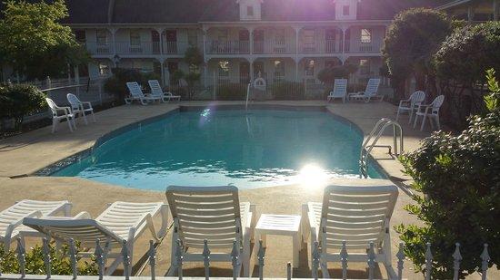 Queen of Diamonds Inn: Nicely kept pool area
