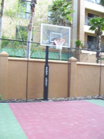 Residence Inn Tampa Downtown: basketball anyone?