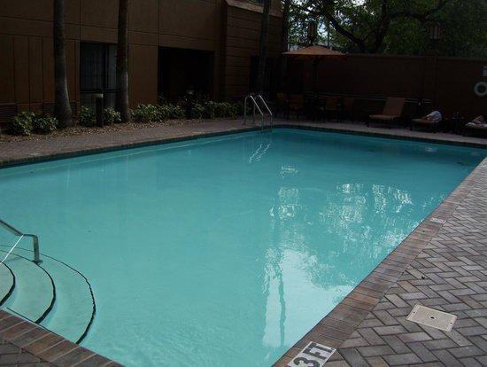 Residence Inn Tampa Downtown: pool