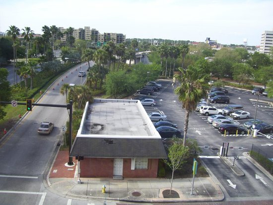 Residence Inn Tampa Downtown: view
