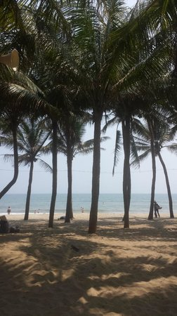 Ki No Homestay : The beach three minutes from the homestay.