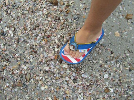 Aonang Ayodhaya Beach Resort: Пляж ракушечный, босиком не походишь!