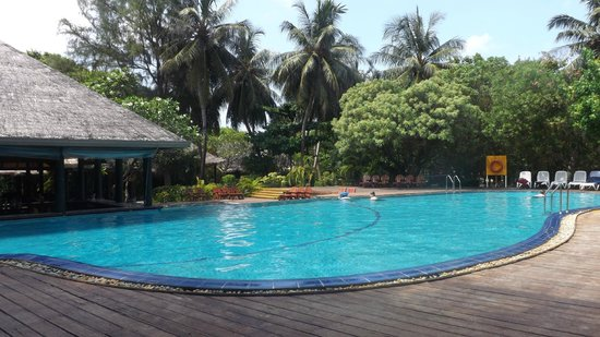 Adaaran Select Hudhuranfushi: Pool and bar area