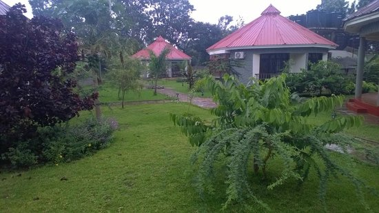 Arusha Planet Lodge : View of Grounds