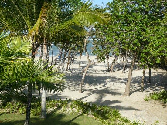 Iberostar Costa Dorada: Voici la vue de notre chambre