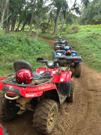 ATV Outfitters Hawaii : ATVs lined up at one of our stops