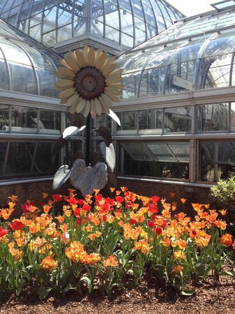 United States Botanic Garden : Outdoor garden in the middle of the gardens